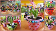 Jolis petits pots multicolores