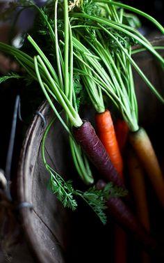 Variety of colors for vegetables / Varietà di colori per le verdure