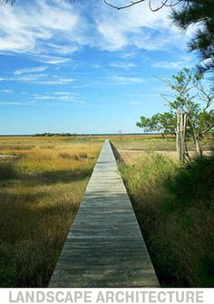 This wooden walkway does what it needs to do simply and beautifully. Low Country, Country Roads, Wooden Walkways, Peaceful Places, Southern Charm, Where The Heart Is, South Carolina, Railroad Tracks, Paths