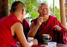 Tibetan Buddhist Monks enjoying tea, a cookie, and laughter. These are necessary ingredients to health!