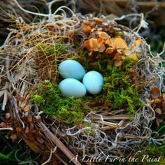 Tutorial on making a nest from materials in your garden