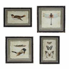 "4-piece wood-framed wall decor set with a nature motif.    Product: Small, medium and 2 large wall decor Construction Material: Wood and glassColor: Distressed black frameDimensions: Small: 13"" H x 9.5"" WMedium: 9.55"" H x 13"" WLarge: 12"" H x 12"" W Cleaning and Care: Wipe with a dry cloth"
