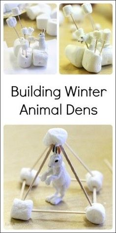 Engineering Project for Kids - Dens for Winter Animals Engineering project for kids - building arctic animal dens with marshmallows and toothpicks Engineering Projects, Stem Projects, Projects For Kids, Art Projects, Engineering Challenges, Reading Projects, Stem Challenges, Artic Animals, Arctic Animals For Kids