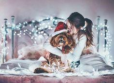Imagem de dog, girl, and christmas Dog Christmas Pictures, Christmas Tumblr, Winter Christmas, Christmas Photography, Winter Photography, Tumblr Photography, Animal Photography, Winter Pictures, Cute Pictures