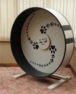 Cat exercise wheel! Love the outside stripes too:) #cats #CatWheel