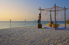 exotic resort (2)