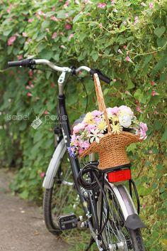 Basket on a bike