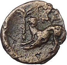 350BC Ancient Greek City Coin APOLLO Ancient Greek Coin Lion i50593