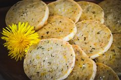 Dandelions are easy to forage for! Dandelion flowers are edible and medicinal and have many uses! Here are 50+ recipes for using wild foraged dandelions in drinks, sweets, baked goods, savory dishes, bath and body, and home remedies. Dandelion Beer Recipe, Dandelion Jelly, Dandelion Recipes, Dandelion Flower, Rosemary Shortbread Cookies, Paleo Cupcakes, Dandelion Benefits, Oranges And Lemons, Savoury Dishes