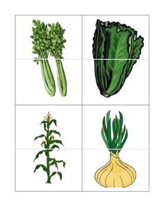 Vegetable 2 part puzzles Preschool Garden, Preschool Crafts, Vegetable Crafts, File Folder Activities, Farm Theme, Fruits And Vegetables, Grocery Store, Cactus Plants, Activities For Kids