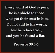 Without all the baseless embellishments, The Clear Word could be a lucid paraphrase of the same base-text upon which the KJV is based.