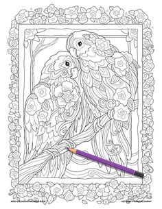 Fine artist and designer. Illustrator of best selling adult coloring books Creative Cats, Owls, and many more. Dover Coloring Pages, Star Coloring Pages, Adult Coloring Book Pages, Cartoon Coloring Pages, Animal Coloring Pages, Coloring Pages To Print, Coloring Books, Colored Pencil Artwork, Color Pencil Art