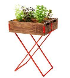 horta na estante