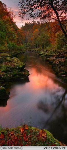 The Strid, Bolton Abbey, Yorkshire Dales, UK nature eco beautiful places landscape travel natura peisaj Foto Nature, All Nature, Amazing Nature, Beauty Of Nature, Photos Of Nature, Green Nature, Nature Pictures, Travel Pictures, Beautiful World