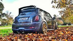 Autumn Suggestion!!! Mini cooper John Cooper work black and gold!