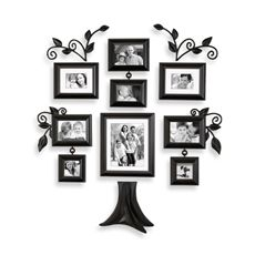 Wall Verbs Family Tree 12-Piece Family Tree Collection- Bed, Bath and Beyond $50