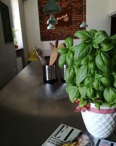 Warsztaty kulinarne w Zabrzu Lana