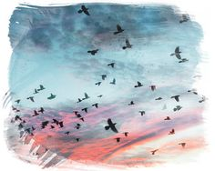 flock of birds, sunset cloud photo, pastel watercolor, bird photography, sunset photo, blue and pink clouds