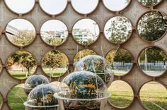 Changing the negative perceptions about insects through interactive architecture!