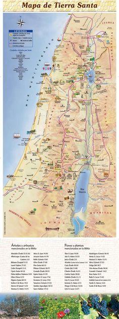 """KClBlUSÏHN MAPS 8: MORE IJD.   *  ¿Zilïíïvïlïal  Q Ciudades visitadas por lesús N"""" según los Evangelios  Clmladn vidas Ciu..."""