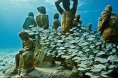 La Evolución Silenciosa (The Silent Evolution) by Jason de Caires Taylor.  Installed in Cancun, Mexico under 8m of water.