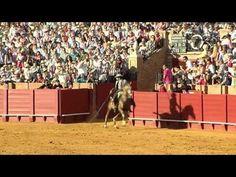 LA TIERRA DEL TORO 33. ESPECIAL FERIA DE ABRIL DE SEVILLA. - http://www.feriadeabrilsevilla.com/la-tierra-del-toro-33-especial-feria-de-abril-de-sevilla/
