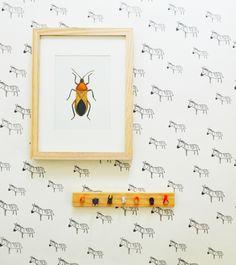 Zebra wallpaper - renter's wallpaper