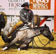 Lee Francois and Desire A Lil Pepto. Summer Spectacular (via Diane Harris-Day)--How do they do this without breaking a leg? Quarter Horses, American Quarter Horse, Clydesdale, All The Pretty Horses, Beautiful Horses, Appaloosa, Cutting Horses, Reining Horses, Westerns
