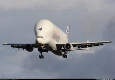 If any plane could be called adorable, this is it. It looks like a beluga whale! Airbus A300B4-608ST Super Transporter, a plane that was used to transport planes. Wow.