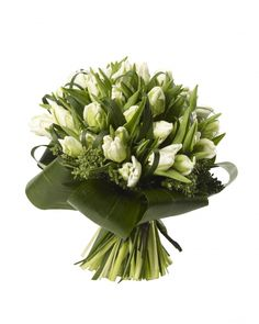 parrot tulips bouquets | parrot tulip bouquet from £ 35 white parrot tulips and aspidistra ...