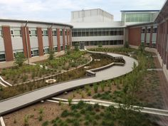 Stormwater management is incorporated into courtyard garden