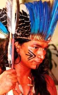 Os tupi-guarani começavam a desenvolver a agricultura, principalmente de mandioca, que era um dos alimentos básicos de sua dieta.