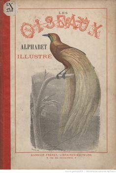 Alphabet illustré des oiseaux, dessins de MM. Traviès et Chapuis...