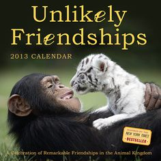 Unlikely Friendships Wall Calendar: Celebrating extraordinary bonds formed by members of different species, Unlikely Friendships offers a fascinating glimpse into the emotional lives of animals both domestic and wild.  $12.99  http://calendars.com/Wildlife/Unlikely-Friendships-2013-Wall-Calendar/prod201300003028/?categoryId=cat00347=cat00347#