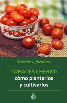 Leaf Vegetable, Ornamental Plants, Root Vegetables, Growing Plants, Farm Life, Garden Projects, Horticulture, Gardening Tips, Flower Arrangements