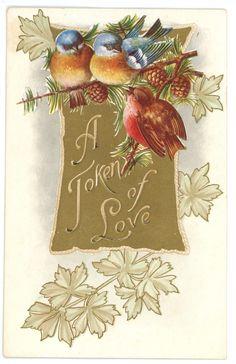 Valentine vintage postcard token love birds gold embossed pi - Valentine's Day