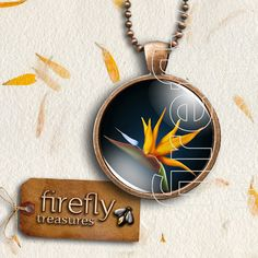 Pendant with Chain. Image of Bird of by AnythingDiscovered on Etsy