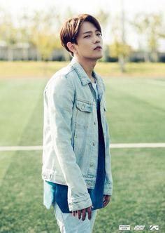 Donghyuk // iKON