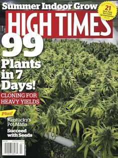 99 Plants in 7 Days! 8531 Santa Monica Blvd West Hollywood, CA 90069 - Call or stop by anytime. UPDATE: Now ANYONE can call our Drug and Drama Helpline Free at 310-855-9168.