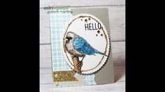 Gaylynn will show you how she water colored this adorable little bird stamp using Distress Markers and how she made the fun glittered frame on this pretty card. Hop on over to the Neat Nook Creatio… Order Stamps, Glitter Frame, Distress Markers, Unity Stamps, Little Birdie, Friendship Cards, Bird Cards, Pretty Cards, Stampin Up Cards