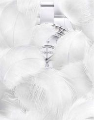 Stunning Chanel watch hidden within the white feathers. All White, Pure White, Chanel Watch, Blue Dream, White Feathers, Shades Of White, Fancy Pants, Winter White, Snow White