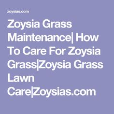 Zoysia Grass lawn tips on care for new & established lawns with a lawn maintenance calendar link. How to care for your zoysia grass, recognize problems, mowing, watering and other useful information on maintaining your Zoysia Grass. Kids Fairy Garden, Zoysia Grass, Yard Edging, Kids Sandbox, Lawn Care Business, Lawn Care Tips, Edging Ideas, Lawn Maintenance, Yard Landscaping