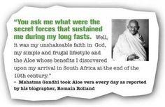 Mahatma Gandhi took Aloe Vera every day