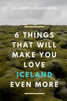 Reasons to Love Iceland. Why everyone is loving Iceland. Iceland Adventures, Money Saving Meals, Iceland Travel, Make It Yourself, Love, Iceland, Amor, Cheap Meals, Frugal Meals