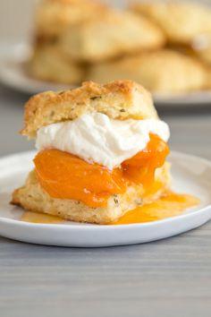 rosemary apricot sho