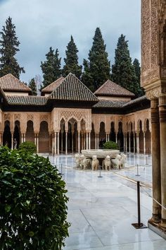 Patio of the Lions, colonaides with a fountain atop lions, with birds singing and flying in circles around the plaza. Birds play here, within the Moorish palace the Alhambra in Granada, Spain. Islamic Architecture, Beautiful Architecture, Alhambra Spain, Andalusia Spain, Beautiful World, Beautiful Places, Le Riad, Spain And Portugal, Spain Travel