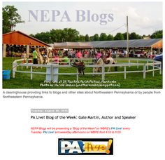 "NEPA Blogs: PA Live! Blog of the Week: @Gale Lawler Martin ""an excellent blog for any reader."""