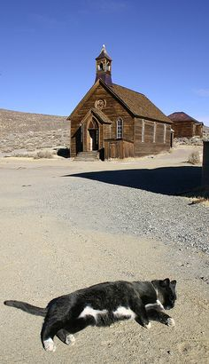 Methodist Church in Bodie Ghost Town