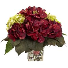 Green & Burgundy Hydrangea Arrangement - This wonderful green & burgundy Hydrangea arrangement is ideal for anyplace you need something bold and beautiful. With multicolored Hydrangea blooms atop big green leaves, it makes for a striking color combination. And as a plus, it never needs care or water, and will stay looking fresh for years. Complete with decorative planter, this piece is ideal for both home and office decorating, and makes a fine gift as well. Number of Trunks: NA Number of…