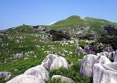 Hiraodai Plateau / Hiraodai Countryside Park | Hello Japan - Japan Travel Guide